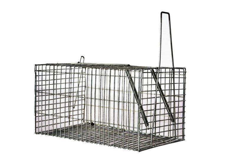 galvanized rat trap cage