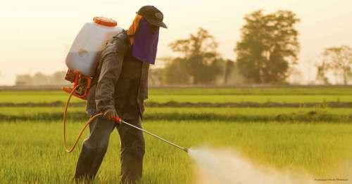 Agricaultural Pesticides
